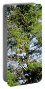 Red Cardinal In Tree Portable Battery Charger