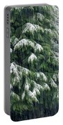 Red Cedar And Snow Portable Battery Charger