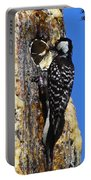 Red Cockaded Woodpecker Mother Feeding Portable Battery Charger