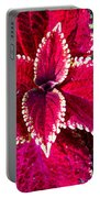 Red Coleus Portable Battery Charger