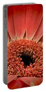 Red Daisy Portable Battery Charger