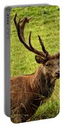 Red Deer Portable Battery Charger