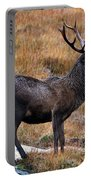 Red Deer Stag In Autumn Portable Battery Charger