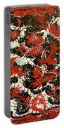 Red Devil U - V1cfs100 Portable Battery Charger