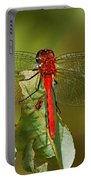 Red Dragon Fly Portable Battery Charger