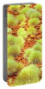 Red Earth And Spinifex 2am-111716 Portable Battery Charger