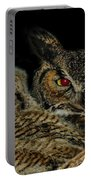 Red Eyed Mama And Baby Horned Owls Portable Battery Charger