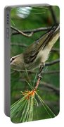 Red Eyed Vireo Portable Battery Charger