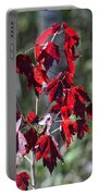 Red Fall Leaves In The Sun Portable Battery Charger