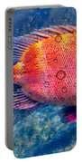 Red Fish Blue Fish Portable Battery Charger