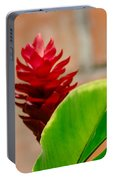 Red Flower IIi Portable Battery Charger