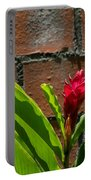 Red Flower Iv Portable Battery Charger