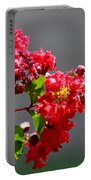 Red Flowers After The Rain Portable Battery Charger