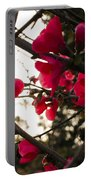 Red Flowers At Sunset Portable Battery Charger