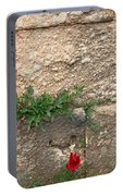 Red Flowers In Ruins Portable Battery Charger