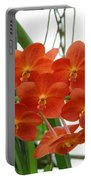 Red Flowers Portable Battery Charger