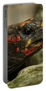 Red-footed Tortoise Portable Battery Charger