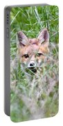 Red Fox Baby Hiding Portable Battery Charger