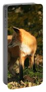 Red Fox In Shadows Portable Battery Charger