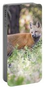 Red Fox Kit Looking For Mom Portable Battery Charger