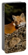 Red Fox Pictures 126 Portable Battery Charger