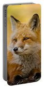 Red Fox Pictures 131 Portable Battery Charger