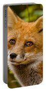 Red Fox Pictures 155 Portable Battery Charger