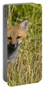 Red Fox Pictures 19 Portable Battery Charger