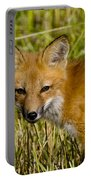 Red Fox Pictures 34 Portable Battery Charger