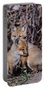 Red Fox Pictures 65 Portable Battery Charger