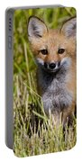 Red Fox Pictures 7 Portable Battery Charger