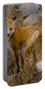 Red Fox Vixen   #3258 Portable Battery Charger