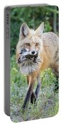 Red Fox Vixen Brings Home A Meal Portable Battery Charger
