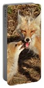 Red Fox Vixen With Pup On Hecla Island In Manitoba Portable Battery Charger