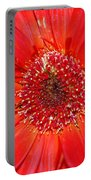 Red Gerber Daisy Portable Battery Charger