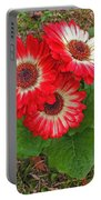 Red Gerbera Daisies Portable Battery Charger