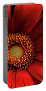 Red Gerbera Portable Battery Charger