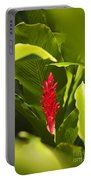 Red Ginger Flower Portable Battery Charger