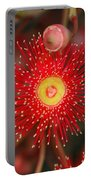Red Gum Flower Macro Portable Battery Charger