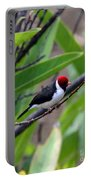 Red Head Portable Battery Charger