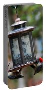 Red Head Wood Peckers On Feeder Portable Battery Charger