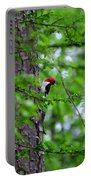 Red Headed Beauty Portable Battery Charger