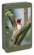 Red-headed Woodpecker Portable Battery Charger