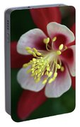 Red Hobbit Columbine 2 Portable Battery Charger