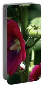 Red Hollyhock 1360 H_2 Portable Battery Charger