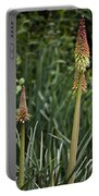 Red Hot Poker Bloom Portable Battery Charger