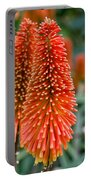 Red-hot Poker Flower Kniphofia Portable Battery Charger