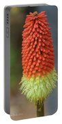 Red Hot Pokers Portable Battery Charger