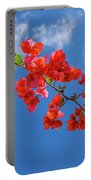 Red In The Sky Portable Battery Charger