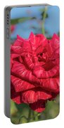 Red Intuition Hybrid Tea Rose, Red Stripe Rose Originally Pr Portable Battery Charger